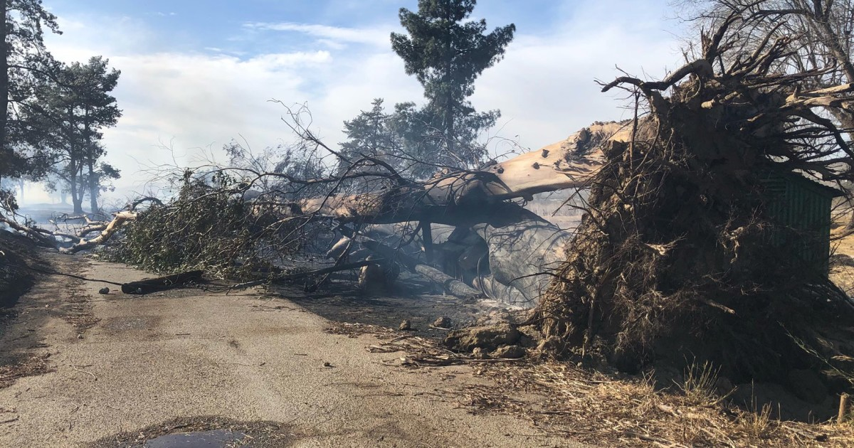 Cornell fire in Ventura likely sparked by downed power line