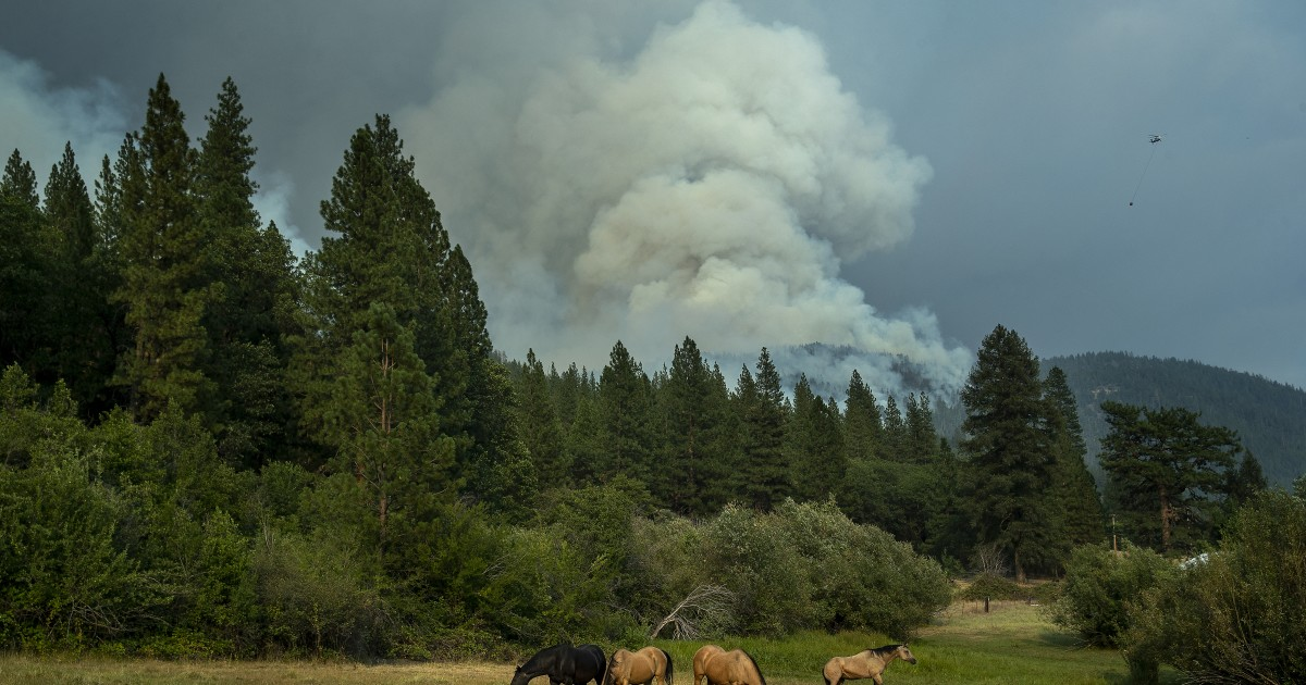 Dixie fire forces new evacuations and strains resources as it burns for more than a month